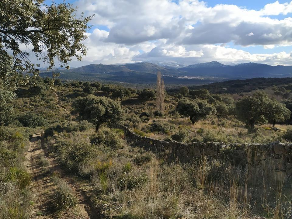 Nace el I Trail del Jamón de Guijuelo