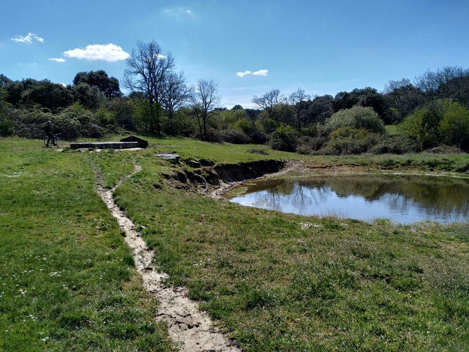 El 12 de Mayo se celebra el Trail del Jamón en Guijuelo
