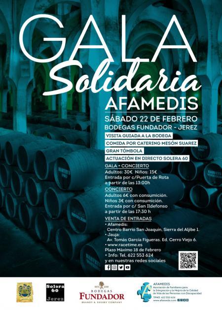V Gala Solidaria Afamedis