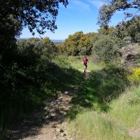 I Trail del Jamon